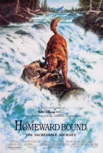 Homeward.bound_dvd_cover